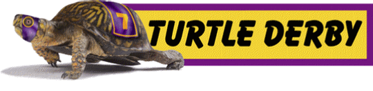 turtlederbylogo1
